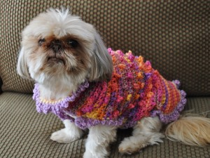 Bella Wearing the Tiny Bobbles and Frills Sweater