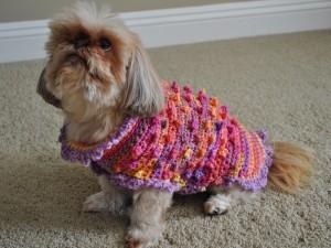 Bella Tiny Bobbles and Frills Crochet Small Dog Sweater ...