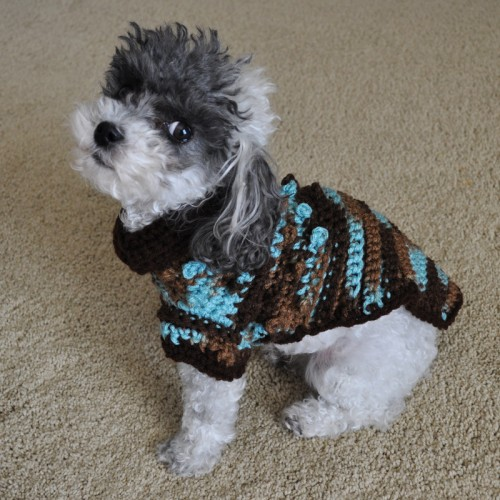 Bobbles Crochet Small Dog Sweater pattern is a quick and easy crochet