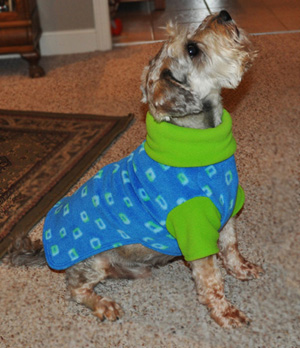 Frisky Wearing Turtleneck Fleece Sweater from Stitchwerx Designs
