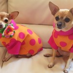 Girlz Wearing Pink Polka Dot Fleece Sweaters from Stitchwerx Designs