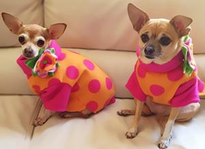 Girlz Wearing Pink Polka Dot Fleece Sweaters from Stitchwerx Designs