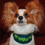 Jasper Wearing Crochet Loop Collar from Stitchwerx Designs