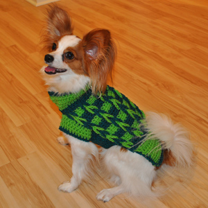 Jasper Wearing Crochet Decorative Loop Sweater by Stitchwerx Designs