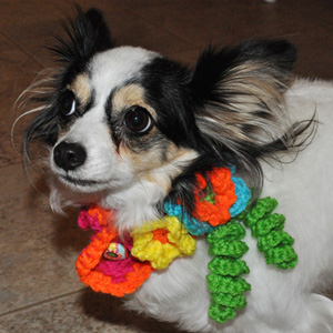 Lily Wearing Crochet Collar with Flowers from Stitchwerx Designs
