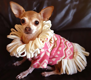 Prudence Wearing the I Love Lucy Fleece Sweater by Stitchwerx Designs